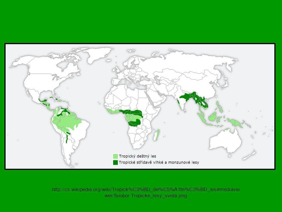 http://cs.wikipedia.org/wiki/Tropick%C3%BD_de%C5%A1tn%C3%BD_les#mediaviewer/Soubor:Tropicke_lesy_sveta.png