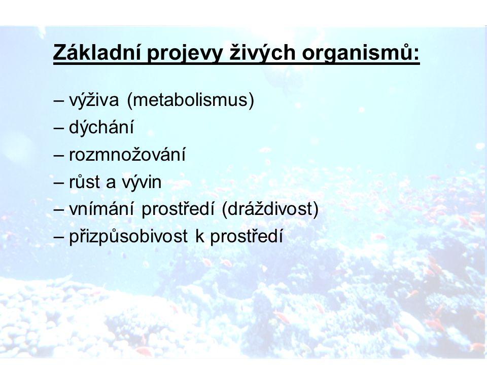 Základní projevy živých organismů: