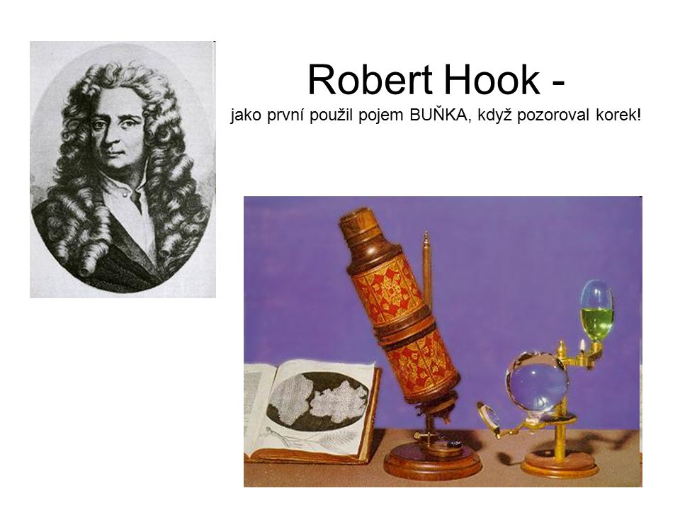 Robert Hook - jako první použil pojem BUŇKA, když pozoroval korek!