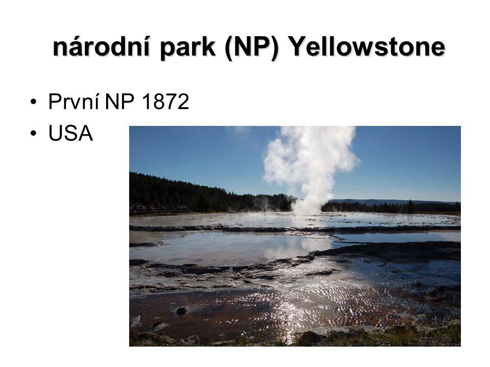národní park (NP) Yellowstone