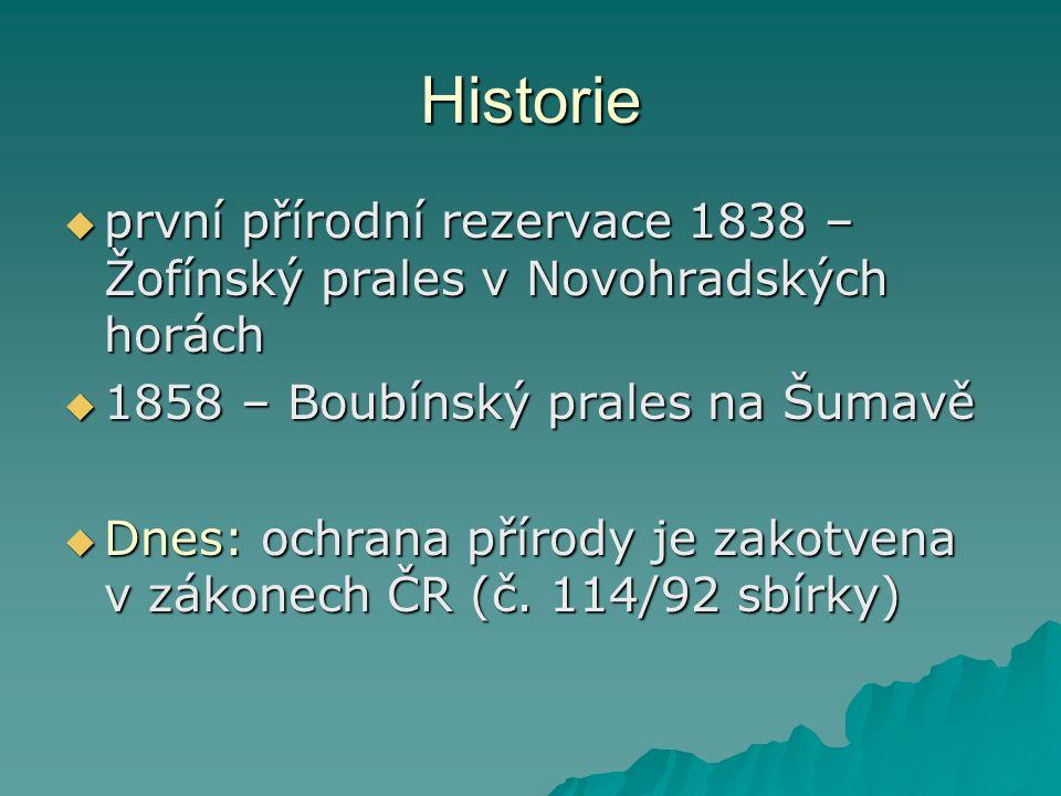 Historie první přírodní rezervace 1838 – Žofínský prales v Novohradských horách. 1858 – Boubínský prales na Šumavě.