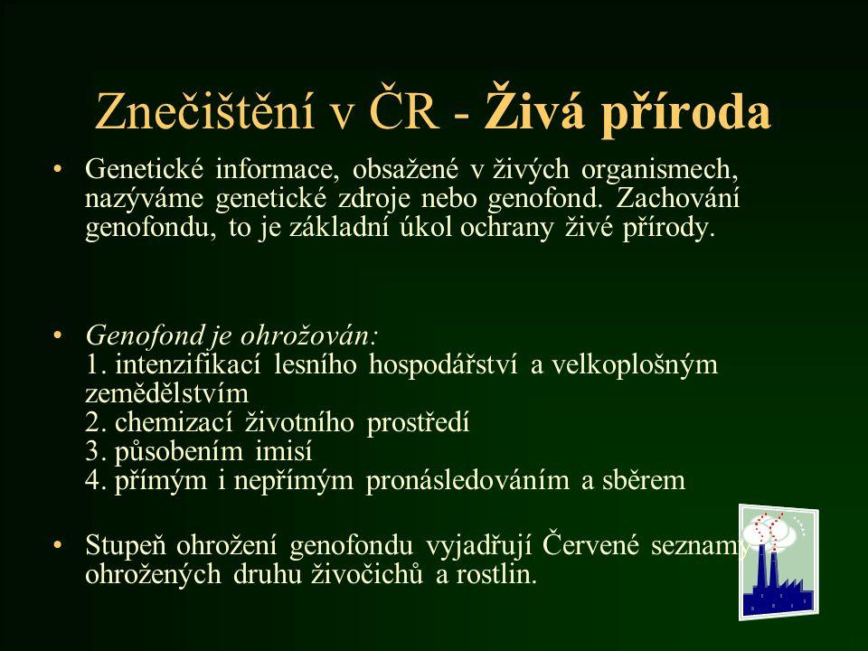 Znečištění v ČR - Živá příroda