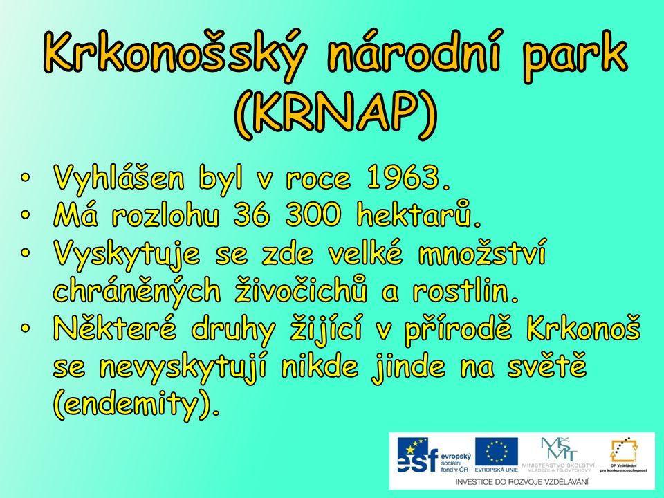 Krkonošský národní park (KRNAP)