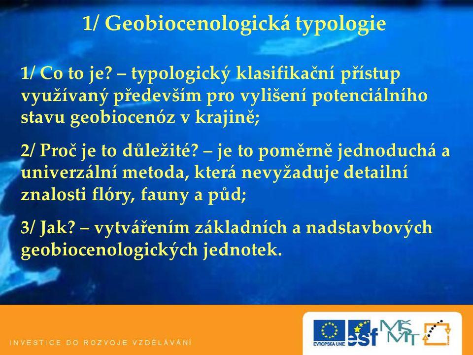 1/ Geobiocenologická typologie