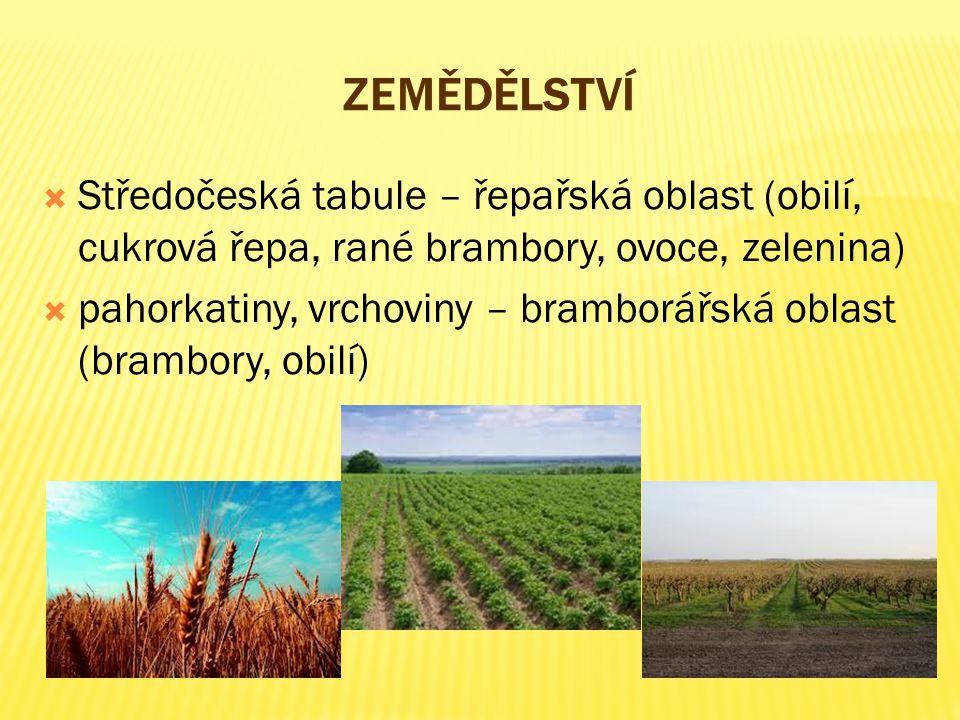 Zemědělství Středočeská tabule – řepařská oblast (obilí, cukrová řepa, rané brambory, ovoce, zelenina)