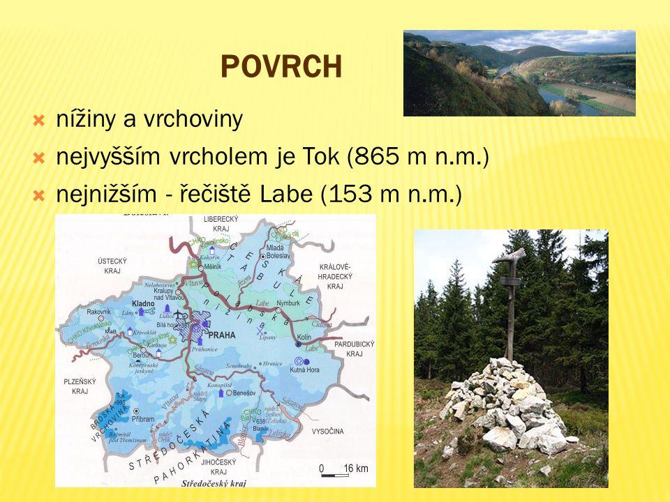 Povrch nížiny a vrchoviny nejvyšším vrcholem je Tok (865 m n.m.)