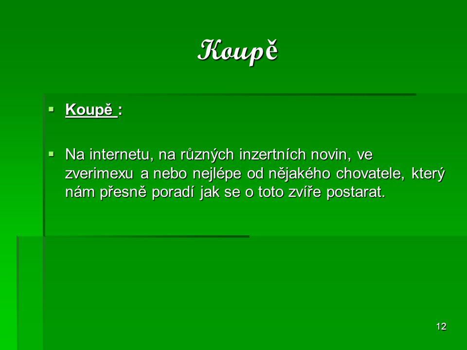 Koupě Koupě :