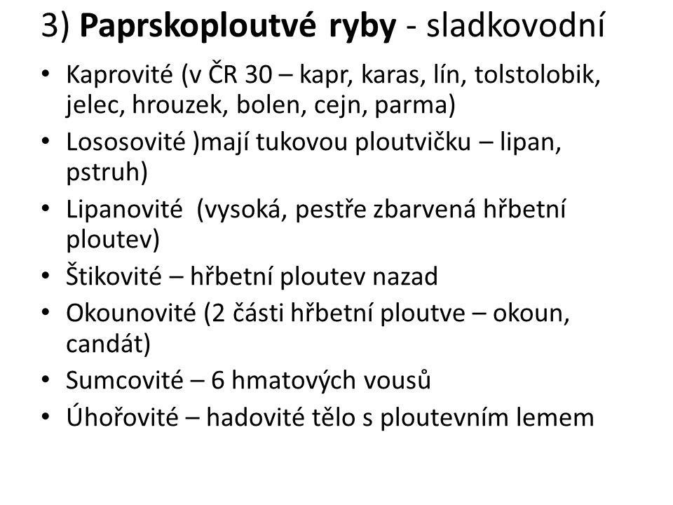 3) Paprskoploutvé ryby - sladkovodní