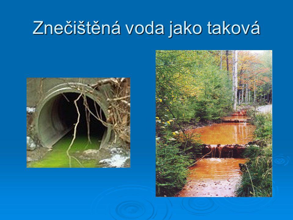 Znečištěná voda jako taková