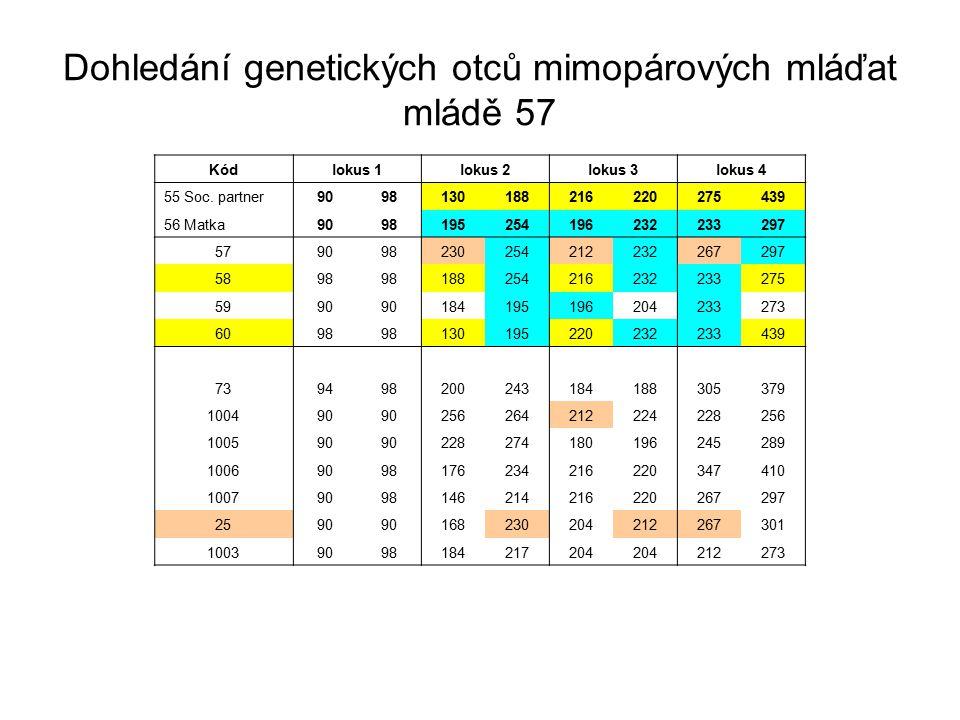 Dohledání genetických otců mimopárových mláďat mládě 57