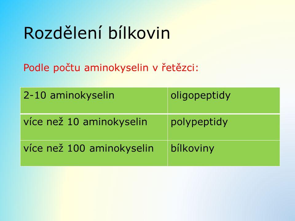 Rozdělení bílkovin Podle počtu aminokyselin v řetězci: