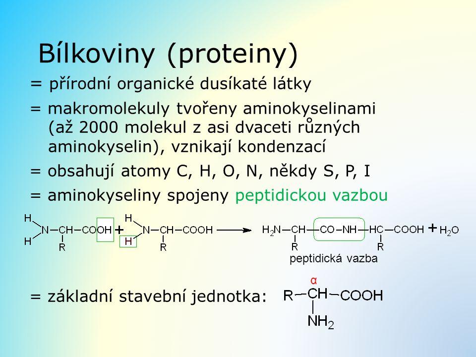 Bílkoviny (proteiny) = přírodní organické dusíkaté látky