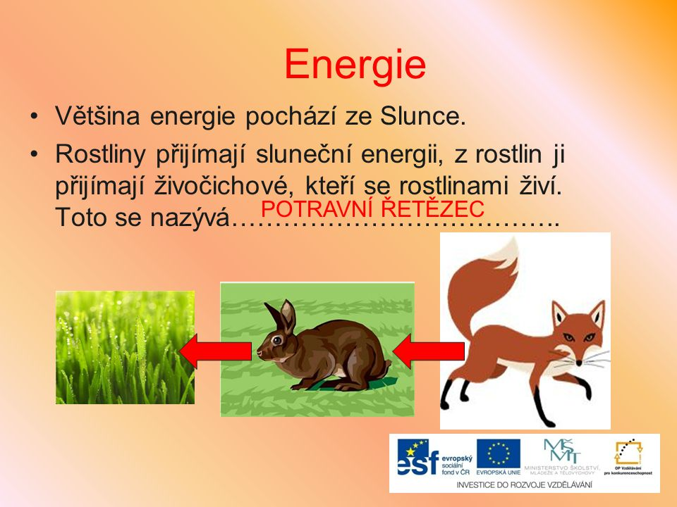 Energie Většina energie pochází ze Slunce.