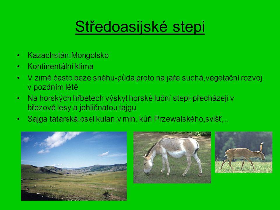 Středoasijské stepi Kazachstán,Mongolsko Kontinentální klima