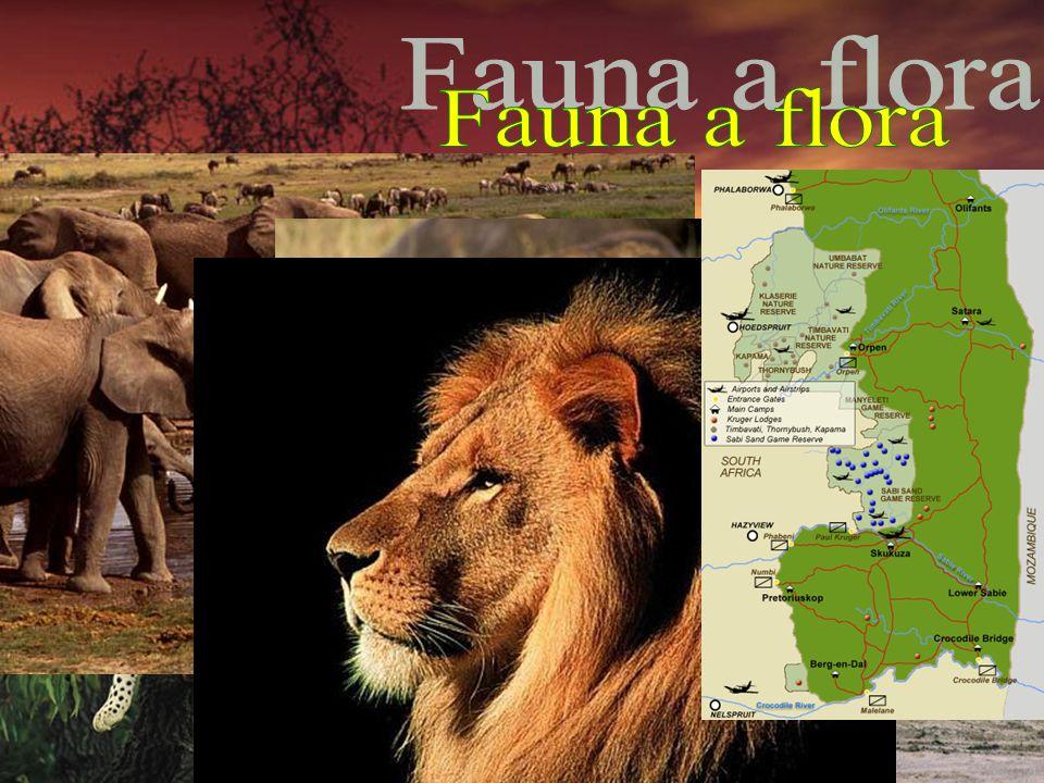 Fauna a flora 3. na světě v biologické rozmanitosti
