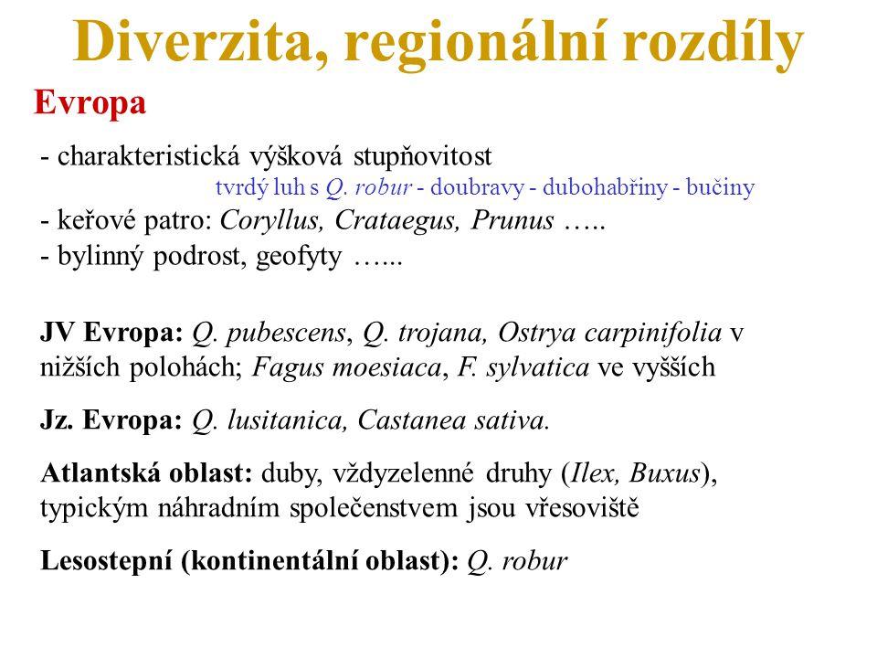 Diverzita, regionální rozdíly