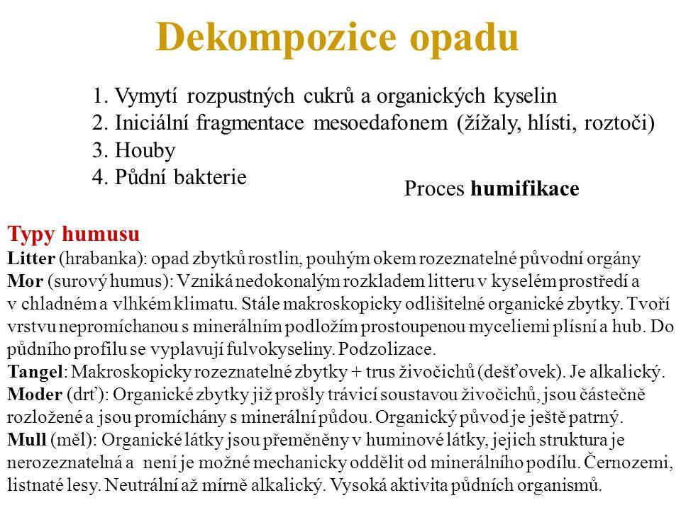 Dekompozice opadu 1. Vymytí rozpustných cukrů a organických kyselin