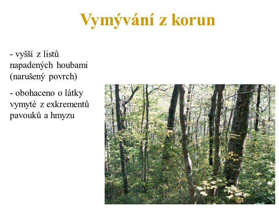 Vymývání z korun - vyšší z listů napadených houbami (narušený povrch)
