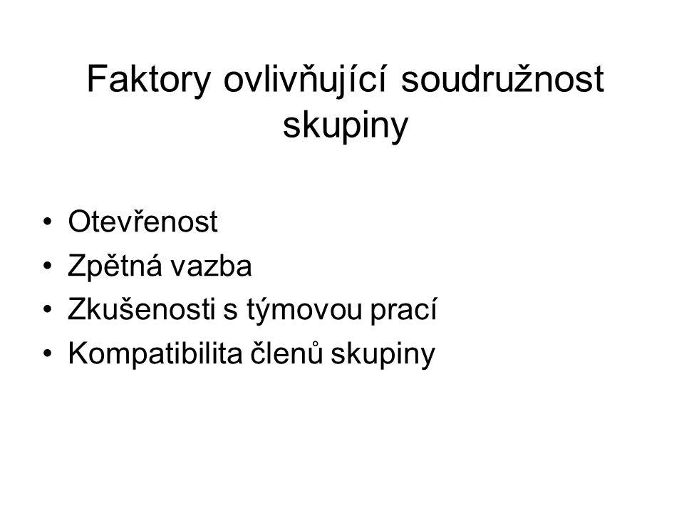 Faktory ovlivňující soudružnost skupiny
