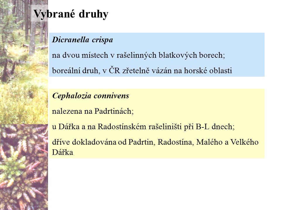 Vybrané druhy Dicranella crispa