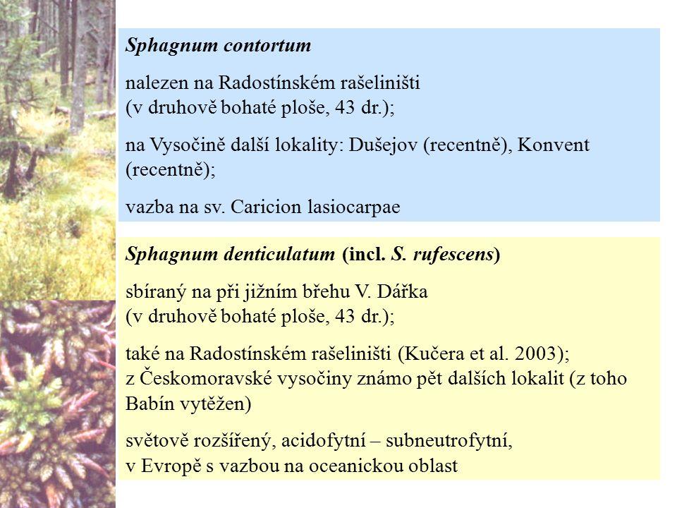 Sphagnum contortum nalezen na Radostínském rašeliništi (v druhově bohaté ploše, 43 dr.);