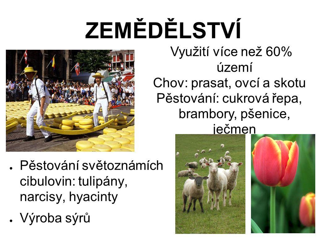 ZEMĚDĚLSTVÍ Využití více než 60% území Chov: prasat, ovcí a skotu