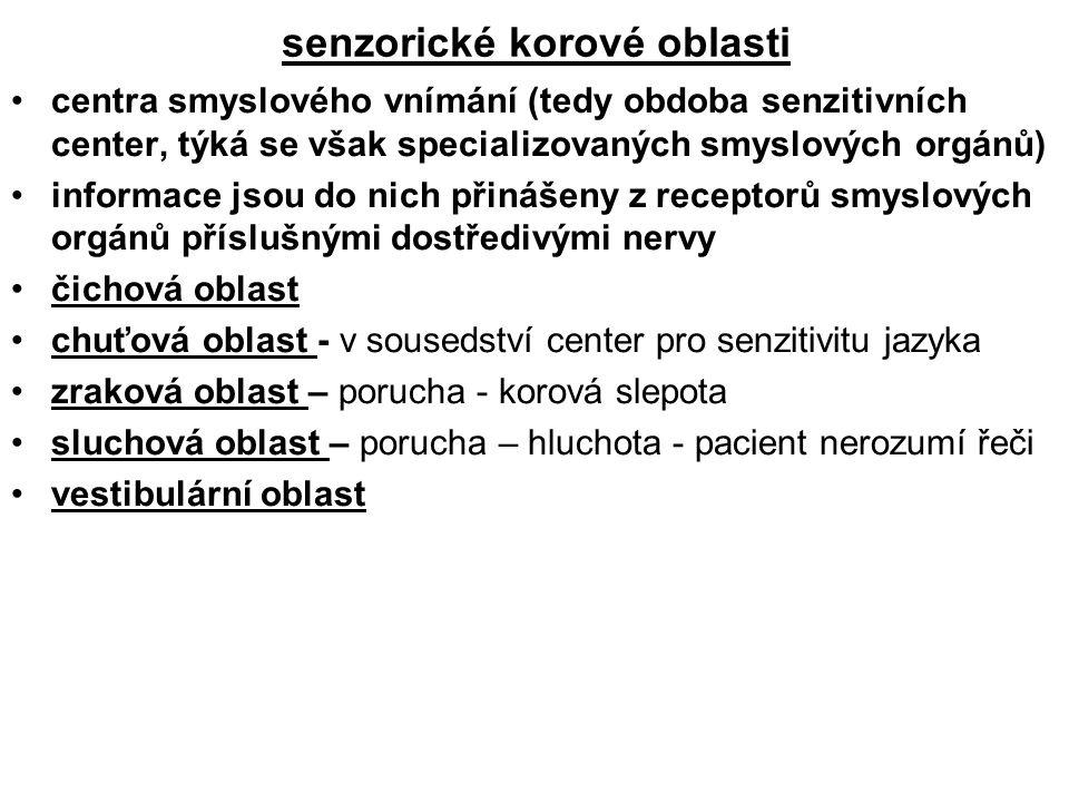 senzorické korové oblasti