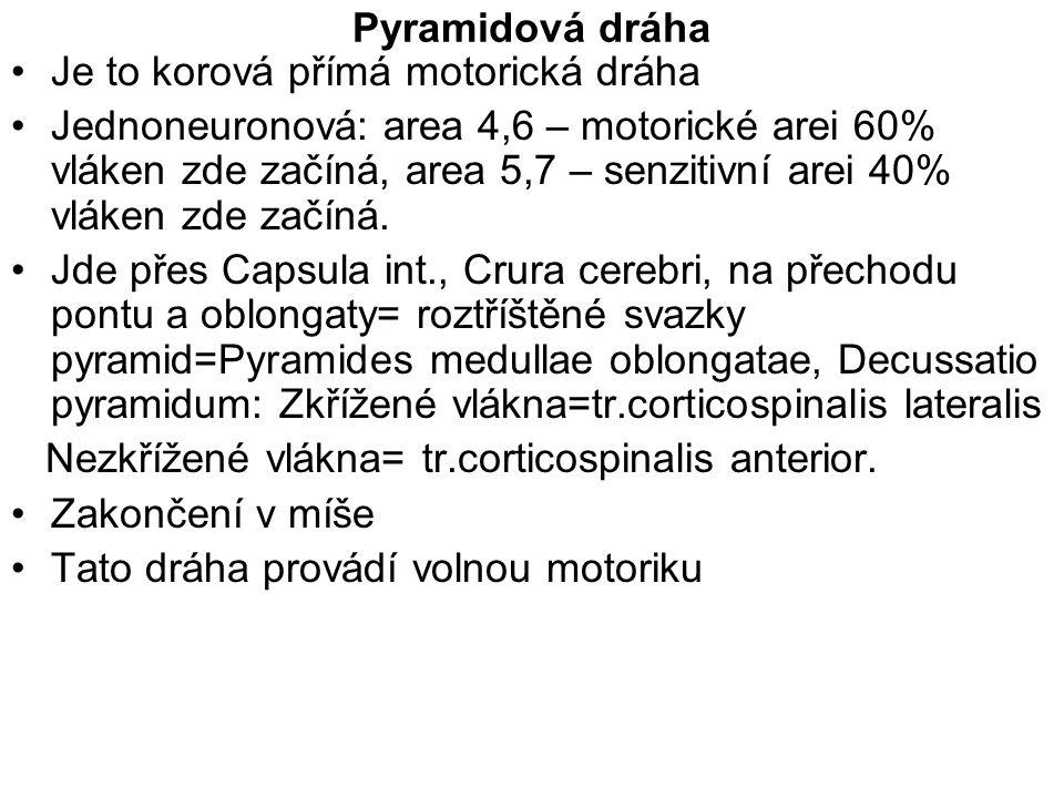 Pyramidová dráha Je to korová přímá motorická dráha.