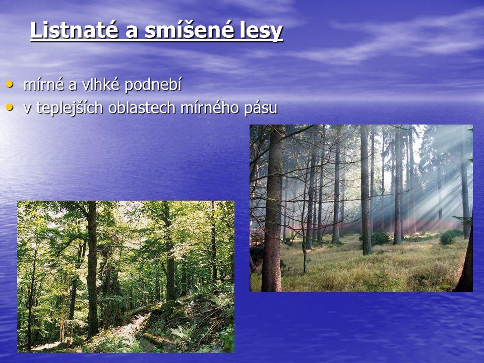 Listnaté a smíšené lesy
