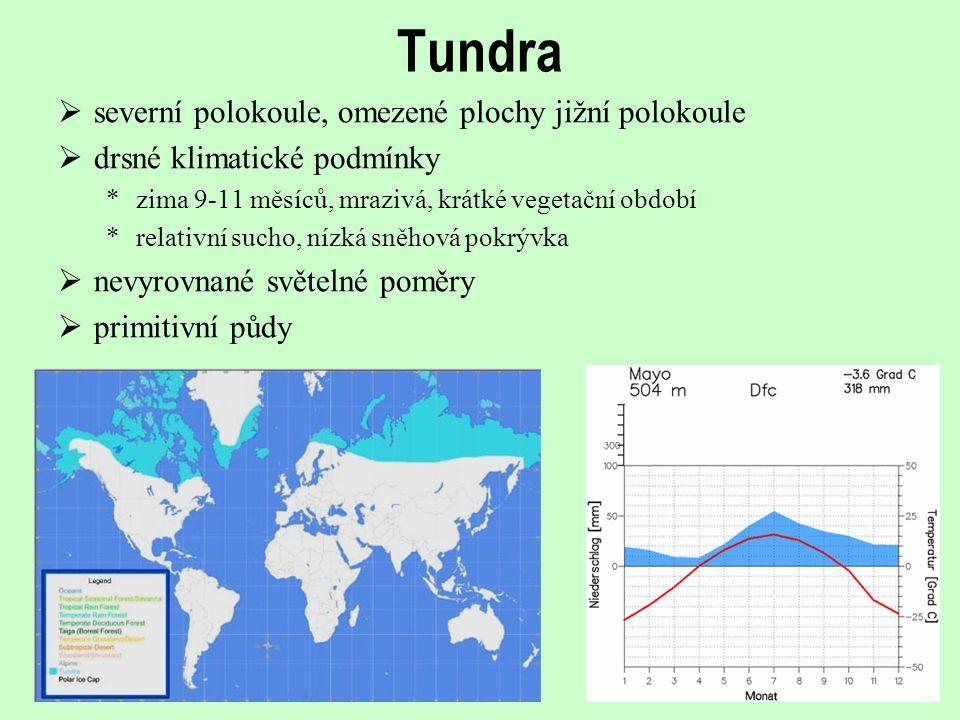 Tundra severní polokoule, omezené plochy jižní polokoule