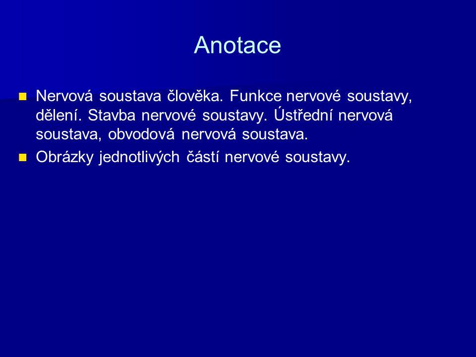 Anotace Nervová soustava člověka. Funkce nervové soustavy, dělení. Stavba nervové soustavy. Ústřední nervová soustava, obvodová nervová soustava.