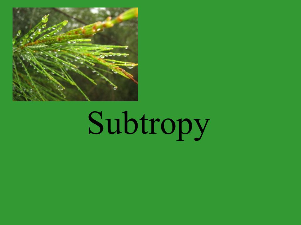 Subtropy