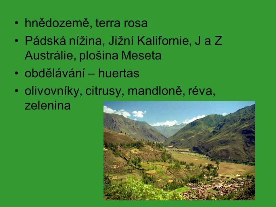 hnědozemě, terra rosa Pádská nížina, Jižní Kalifornie, J a Z Austrálie, plošina Meseta. obdělávání – huertas.