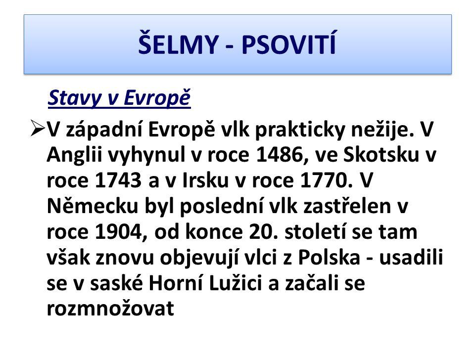 ŠELMY - PSOVITÍ Stavy v Evropě.