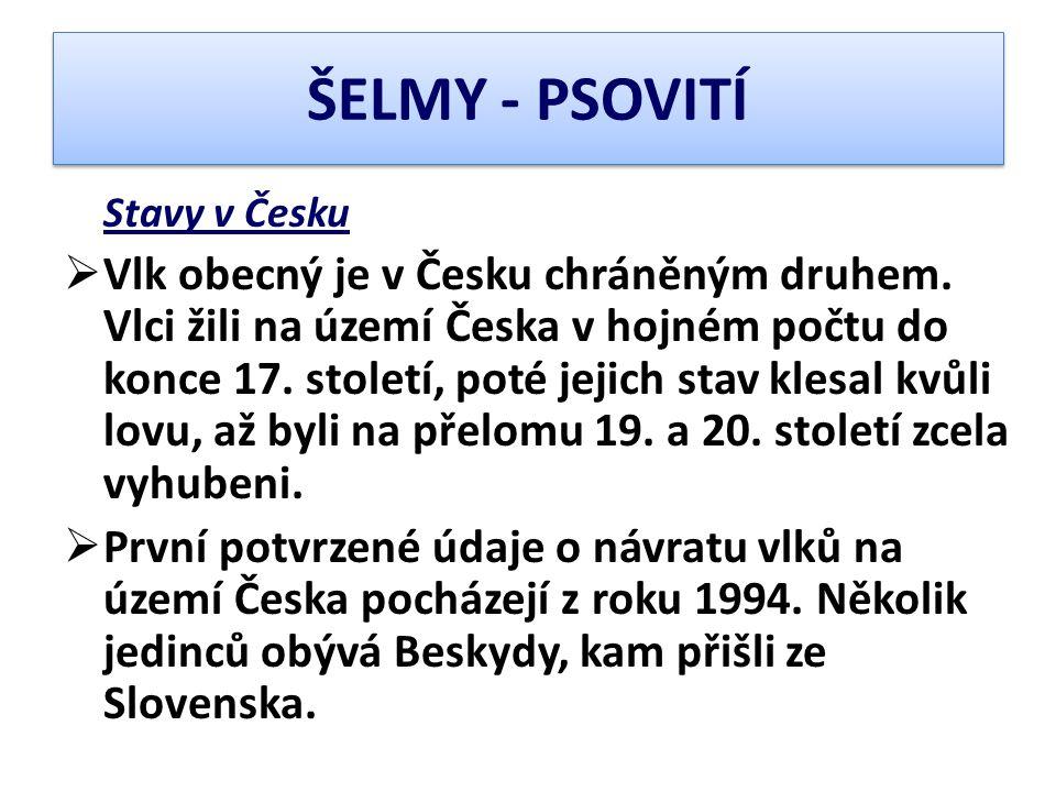 ŠELMY - PSOVITÍ Stavy v Česku.
