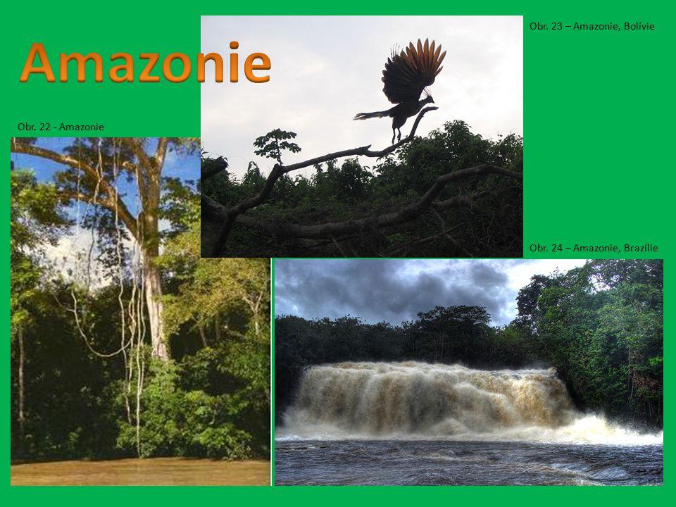 Amazonie Obr. 23 – Amazonie, Bolívie Obr. 22 - Amazonie
