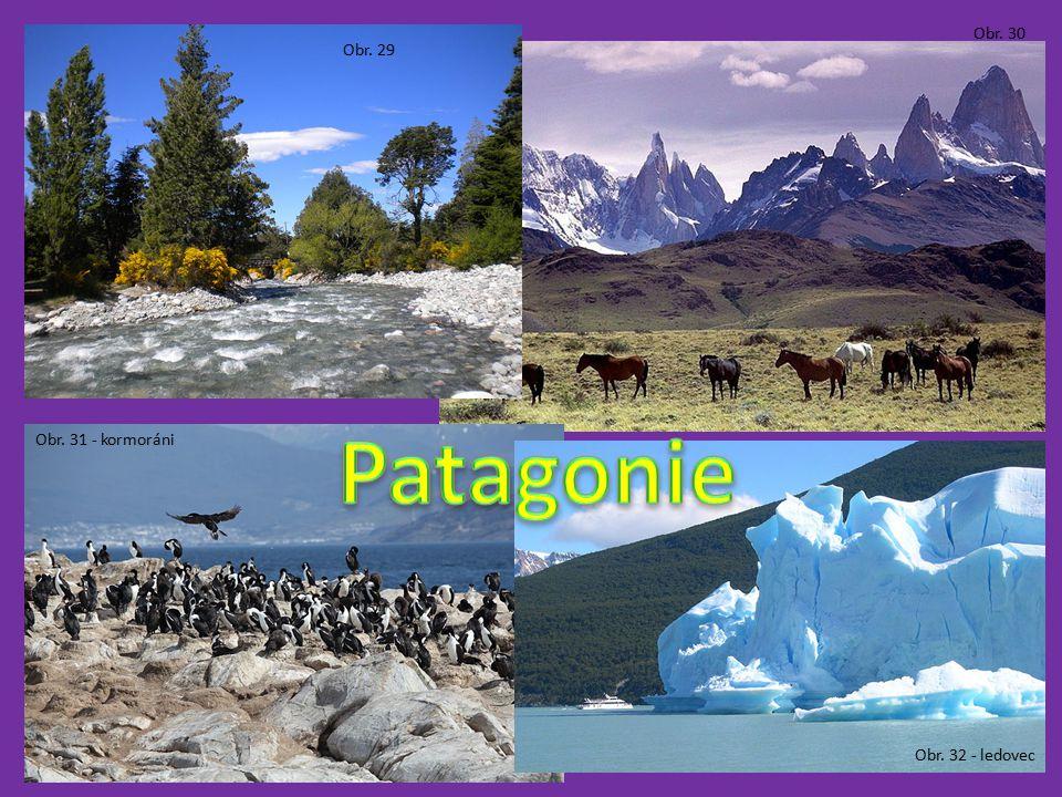 Obr. 30 Obr. 29 Patagonie Obr. 31 - kormoráni Obr. 32 - ledovec