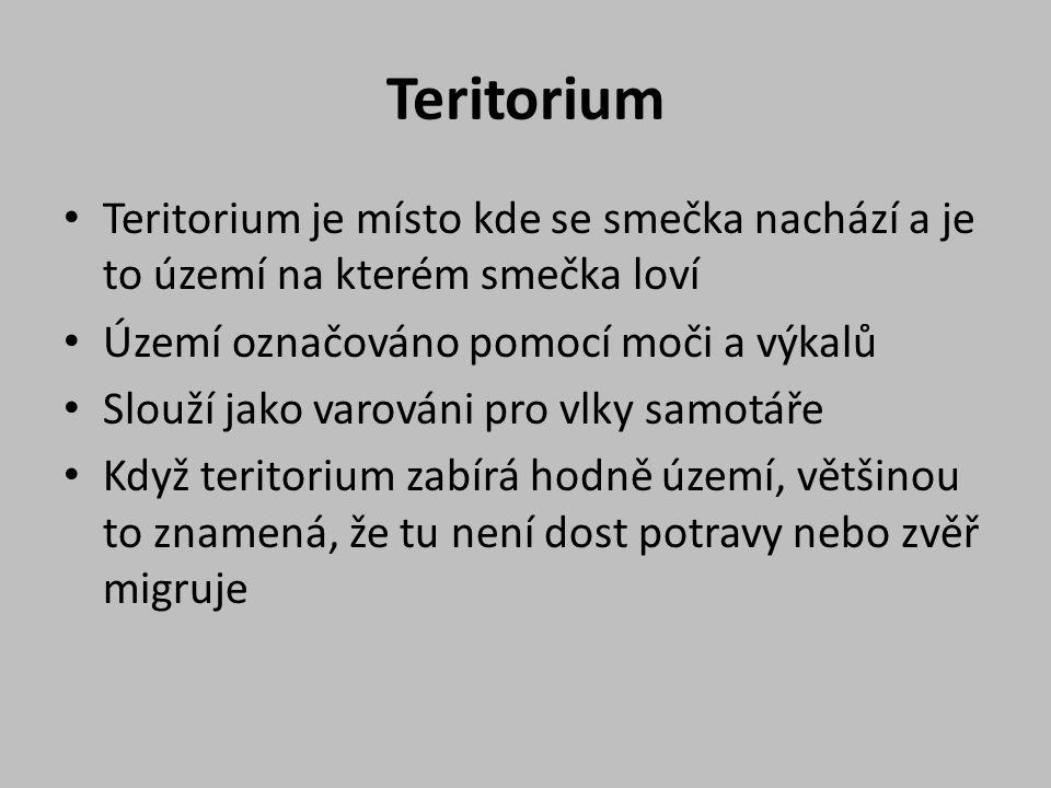 Teritorium Teritorium je místo kde se smečka nachází a je to území na kterém smečka loví. Území označováno pomocí moči a výkalů.