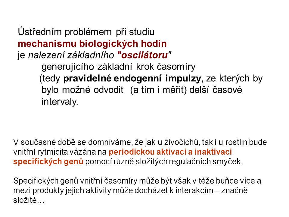 Ústředním problémem při studiu mechanismu biologických hodin