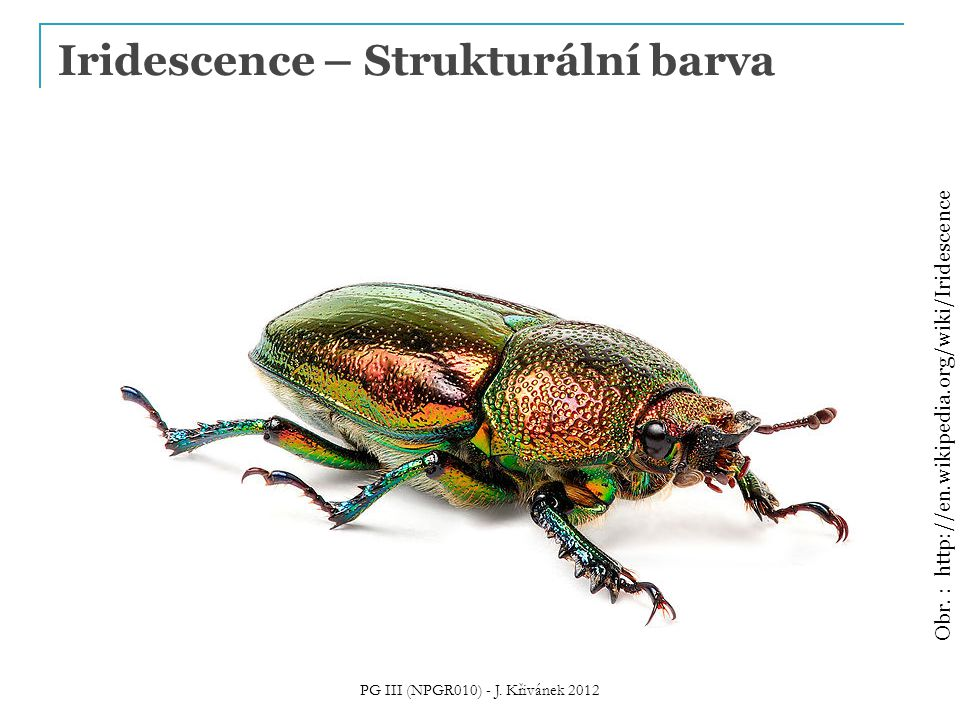 Iridescence – Strukturální barva