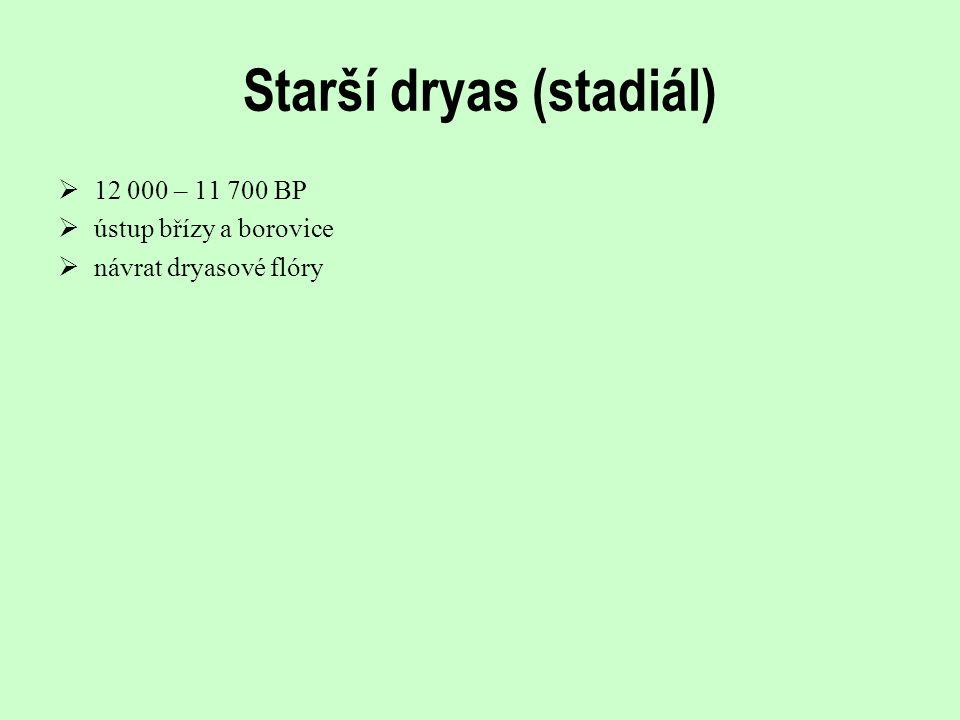Starší dryas (stadiál)