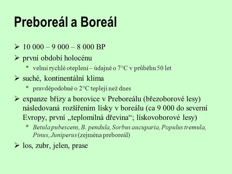 Preboreál a Boreál 10 000 – 9 000 – 8 000 BP první období holocénu