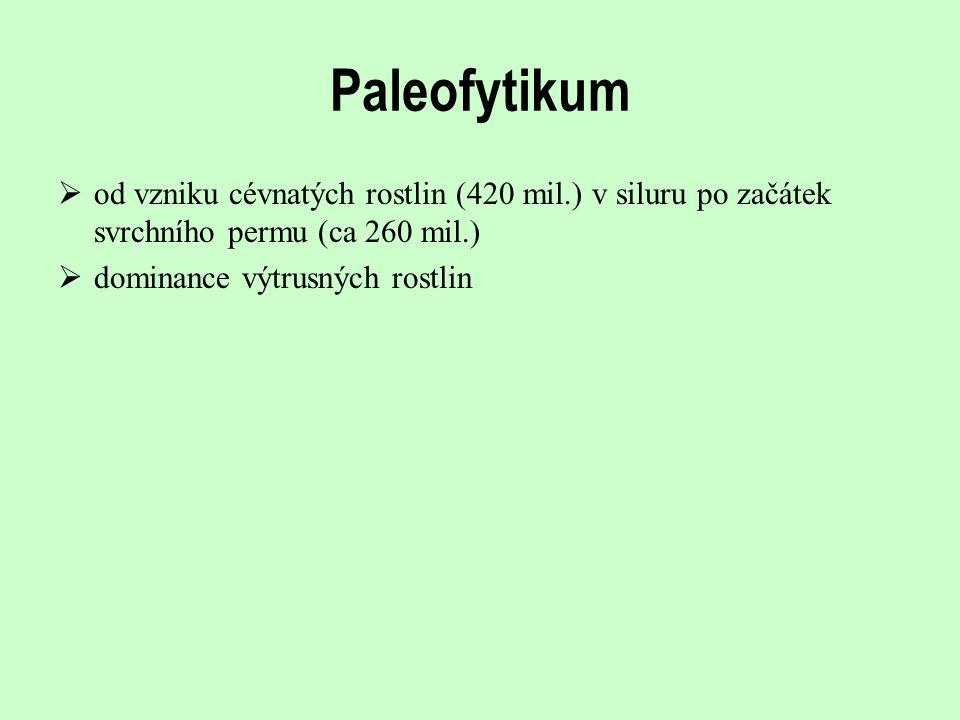 Paleofytikum od vzniku cévnatých rostlin (420 mil.) v siluru po začátek svrchního permu (ca 260 mil.)
