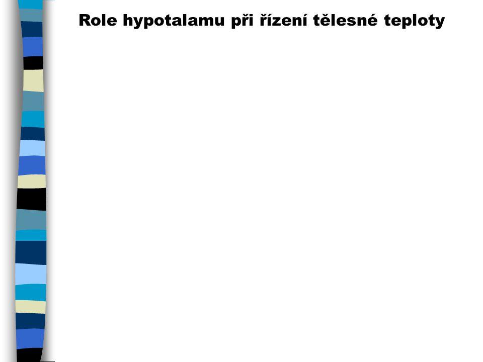 Role hypotalamu při řízení tělesné teploty