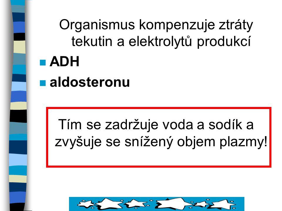 Organismus kompenzuje ztráty tekutin a elektrolytů produkcí ADH