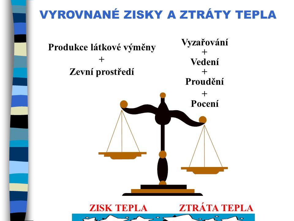 Produkce látkové výměny ZISK TEPLA ZTRÁTA TEPLA