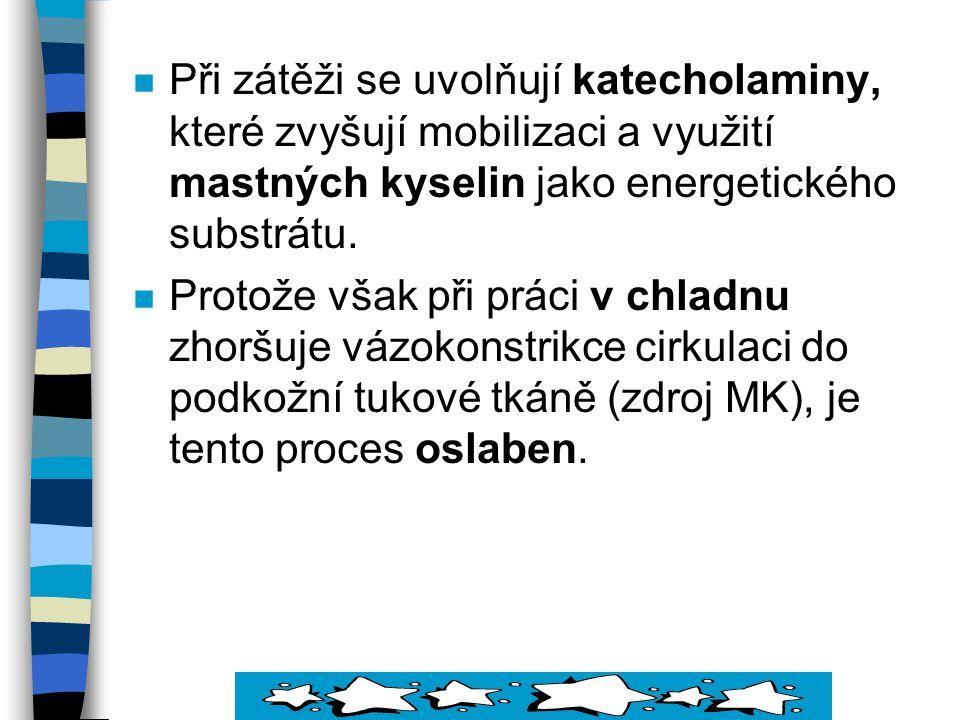 Při zátěži se uvolňují katecholaminy, které zvyšují mobilizaci a využití mastných kyselin jako energetického substrátu.