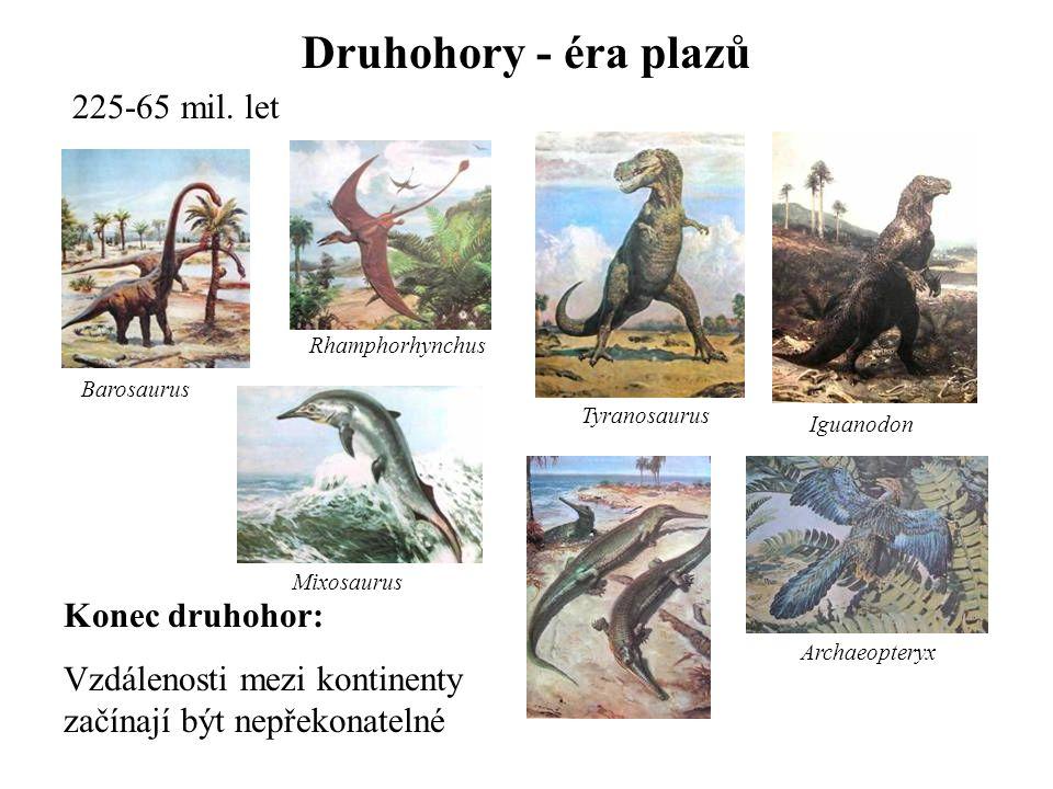 Druhohory - éra plazů 225-65 mil. let Konec druhohor: