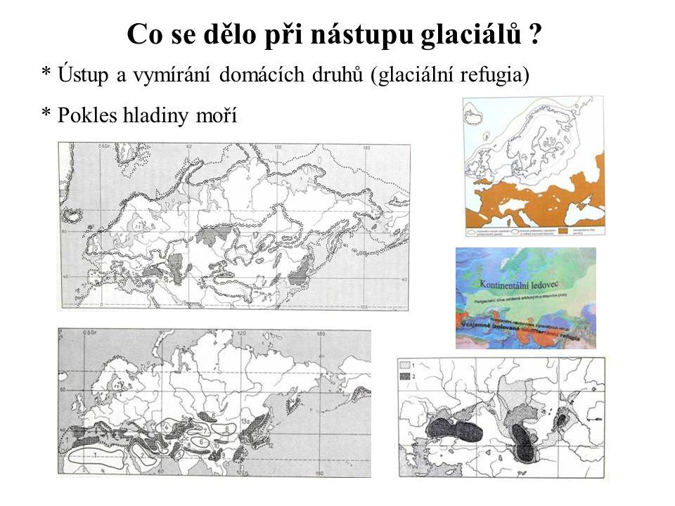 Co se dělo při nástupu glaciálů