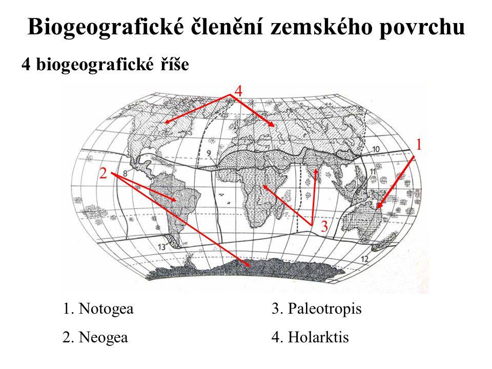 Biogeografické členění zemského povrchu
